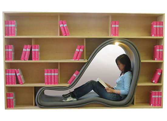 Amazing Bookshelves 550 x 400
